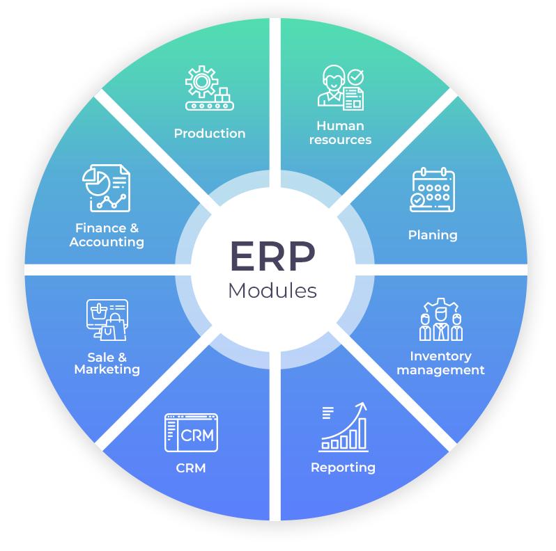 Enterprise resource planning Development